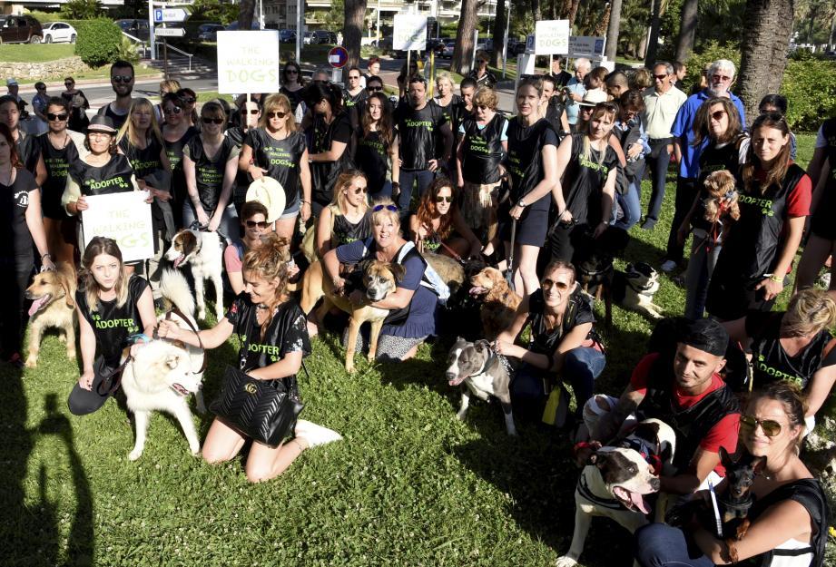 Des cabots de tous poils qui charment les passants, c'est le concept insolite et malin de cette opération qui a mobilisé hier de très nombreux bénévoles d'associations liées à la protection animale.