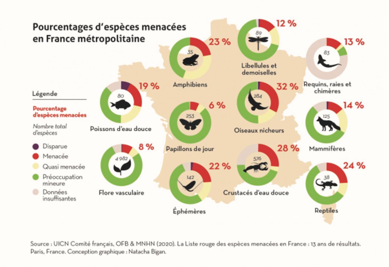 Pourcentages d'espèces menacées en France métropolitaine.