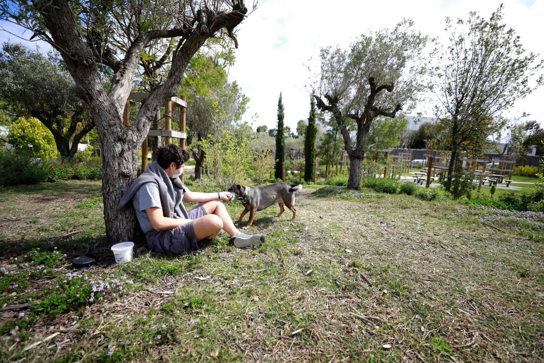 La partie déjà existante du Parc Méridia, dont l'extension sera un projet majeur de la ville de Nice.