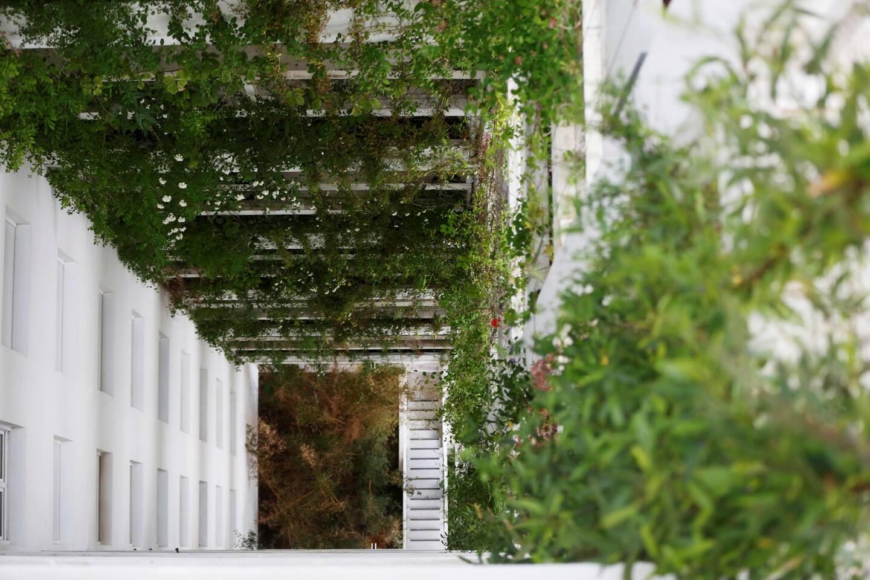 Le bâtiment Jean Nouvel mise sur la végétalisation.