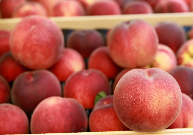 Les contrats signés avec les maraîchers, viticulteurs et producteurs de fruits français ont généré en 2015 un chiffre d'affaires de 53 millions d'euros.