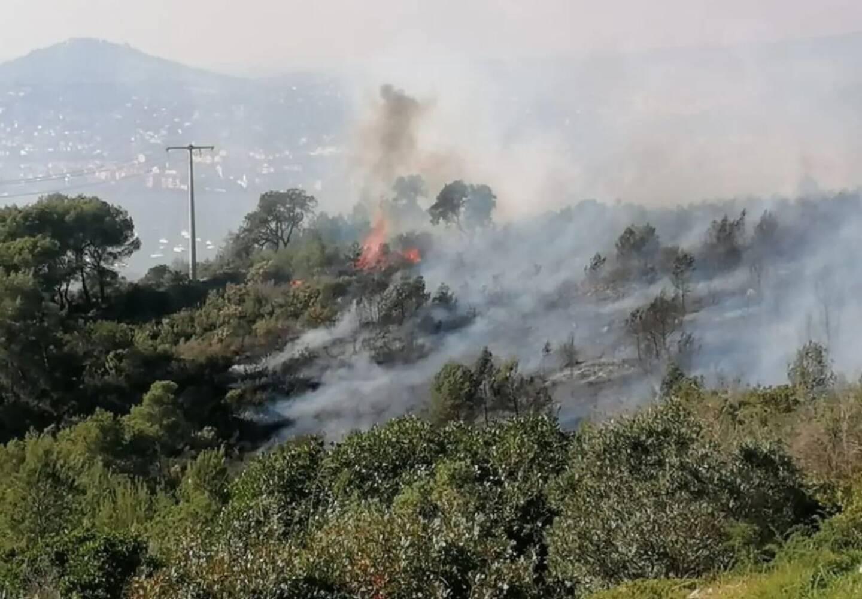 Le feu, rapidement maîtrisé par les pompiers, a parcouru deux hectares de végétation.