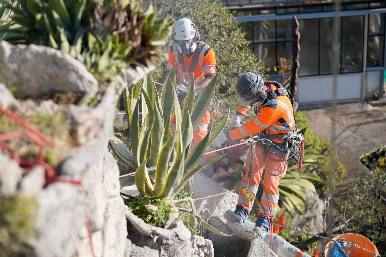 Le chantier se déroule au milieu des succulentes, dont la plupart ont été protégés par l'équipe des jardiniers attentive aux côtés des ouvriers.