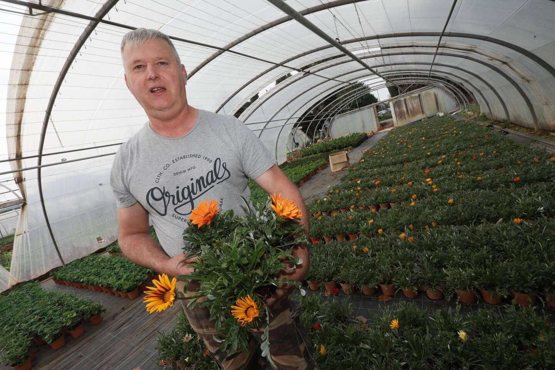 """""""Je ne suis pas maniaque mais mes plantes sont très bien soignées"""", souligne Jean-Marie Ollivier."""