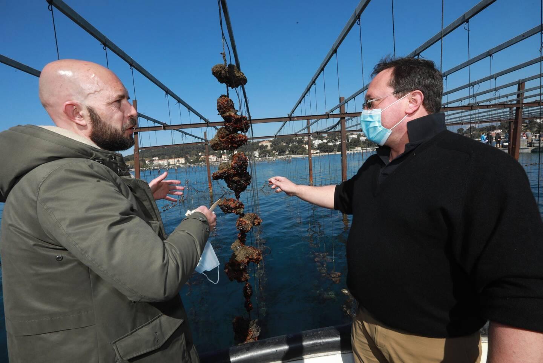 Martial Hourdequin (à droite), ostréiculteur des Perles de Tamaris, présente au chef Philippe Colinet les huîtres du parc.