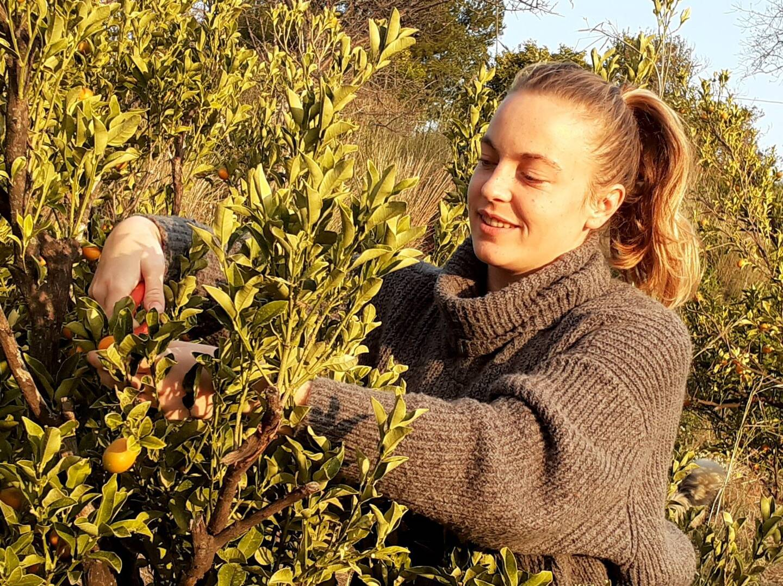 Amélie Paoli, productrice carqueirannaise de kumquats.