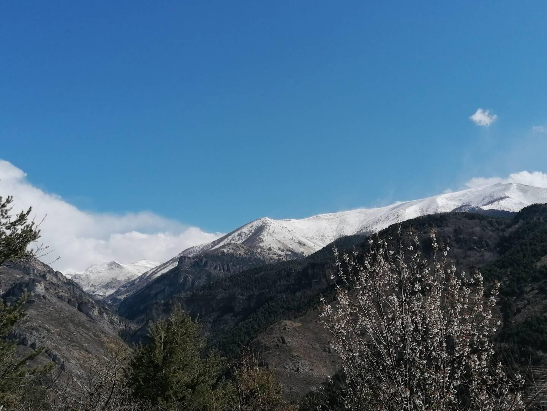 À Tende, les premiers signes du printemps avec le Marguareis (à gauche sur la photo) et le mont Bertrand (à droite) recouverts d'un saupoudrage un peu plus conséquent. (Photo Murielle Prigent)