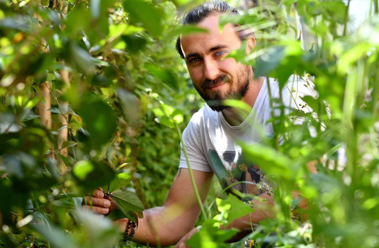 Franck Auvaro, jardinier paysagiste à Toulon.