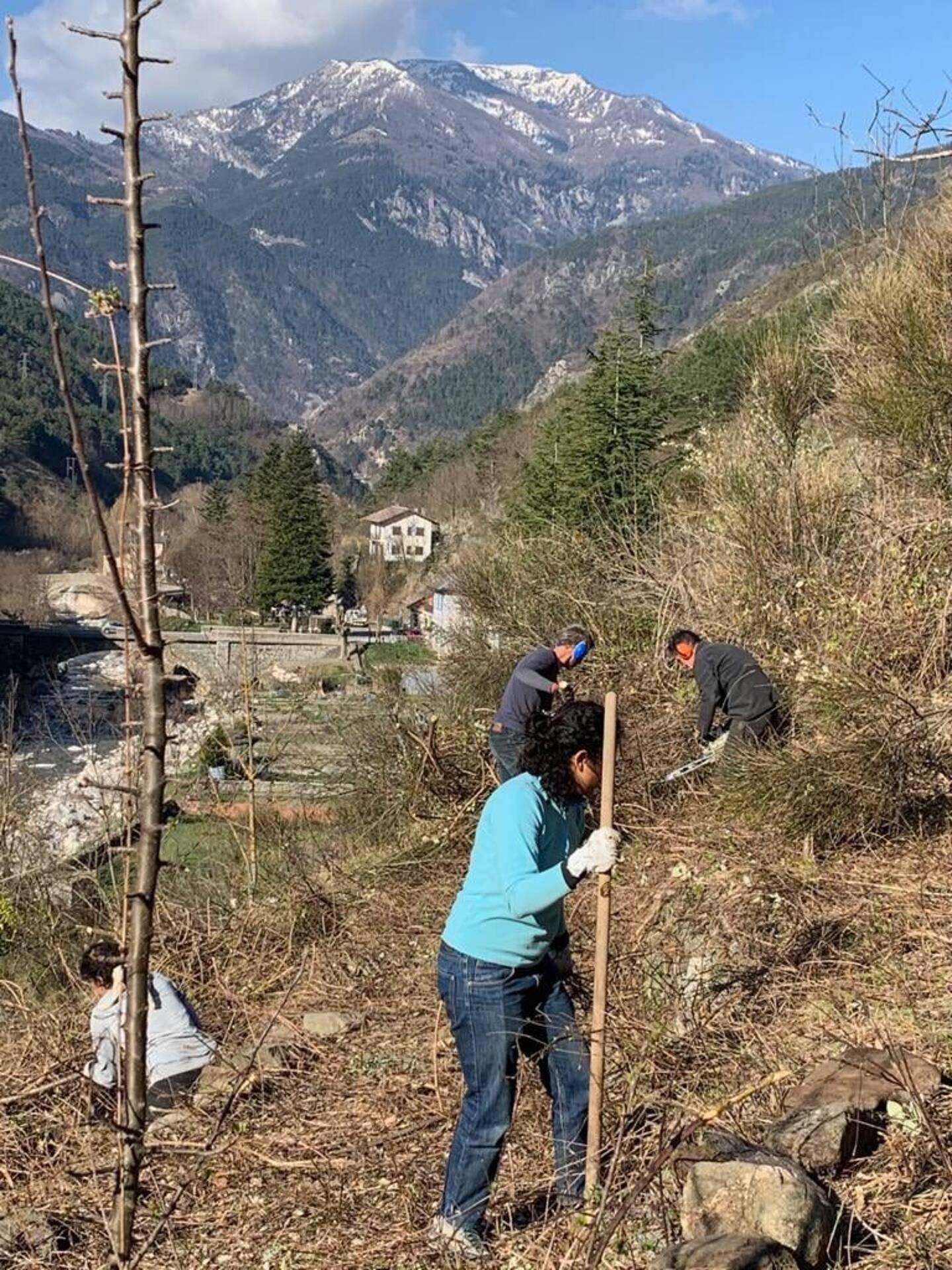 Les bénévoles se retrouvent tous les samedis pour débroussailler les restanques où se trouvait l'ancien vignoble.