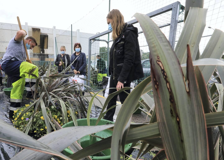Il fallait être rapide pour profiter des plantes de la commune, hier au parc Sauvaigo.