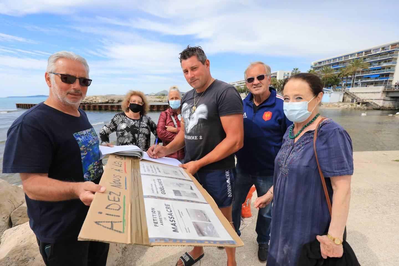 Les ange-gardiens des cygnes font signer une pétition pour réclamer des mesures de protection.