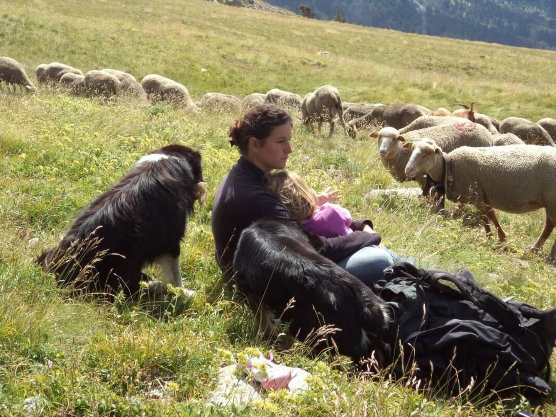 Claire Giordan élève son troupeau de moutons mérinos – qui compte 700 têtes – dans la vallée de la Roya, à Saorge. Elle sera présente samedi à Cagnes-sur-Mer pour présenter et vendre les chaussettes en laine qu'elle confectionne elle-même avec la laine de ses bêtes.