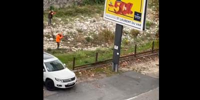 """""""Je suis choquée"""": vif émoi après une battue aux sangliers en pleine ville dans les Alpes-Maritimes"""